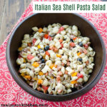 Italian Sea Shell Pasta Salad | realmomkitchen.com