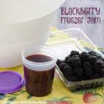 Blackberry Freezer Jam | realmomkitchen.com